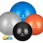 BODYMATE-Ballon-Fitness-Pompe-Incluse-E-Book-Gratuit-85cm-Argent-0